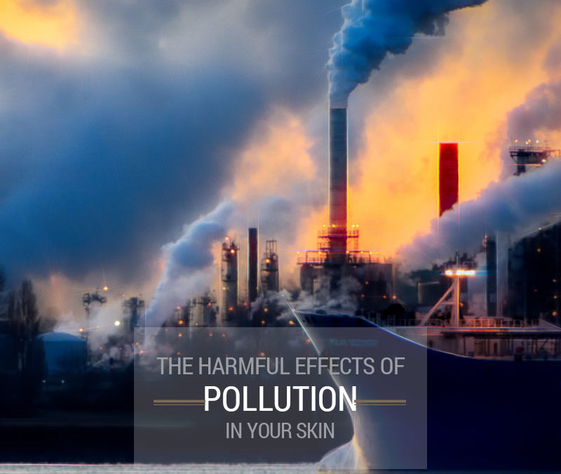 The Harmful Effects of Pollution in your Skin